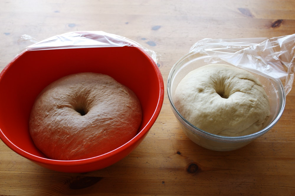 dough rising in bowl