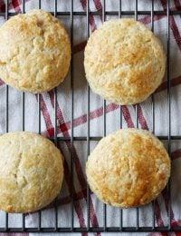Powdermilk Biscuits