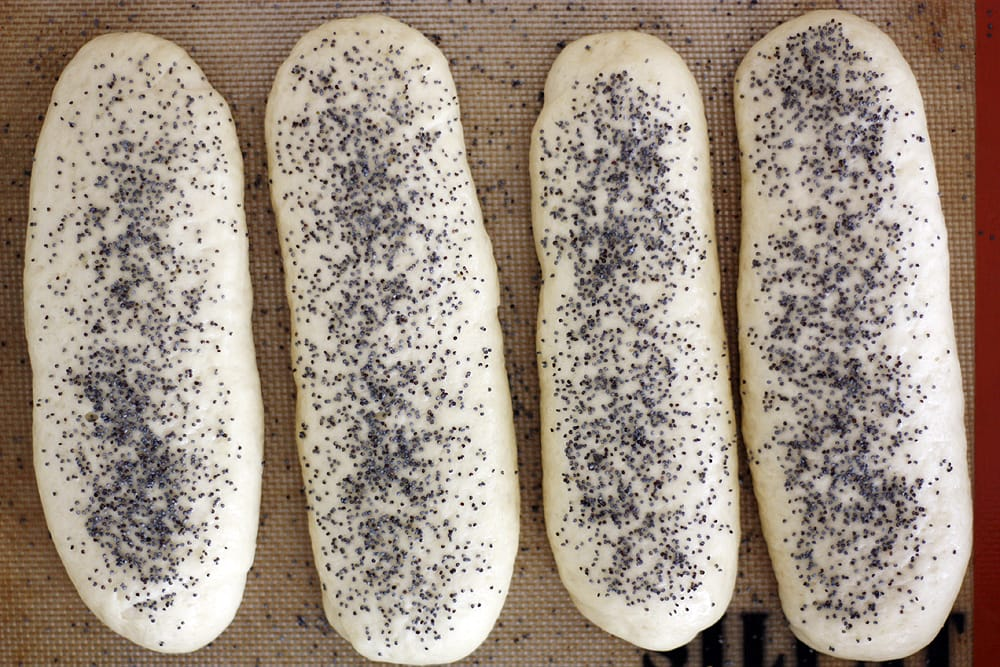 Chicago style hot dog bun dough with poppy seeds on top