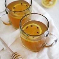 classic hot toddy cocktails