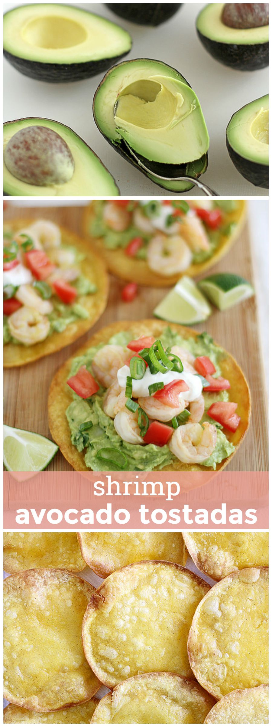 Shrimp Avocado Tostadas -- crispy tortillas topped with guacamole, tomatoes, sour cream and shrimp. It's hard to eat just one! girlversusdough.com @girlversusdough