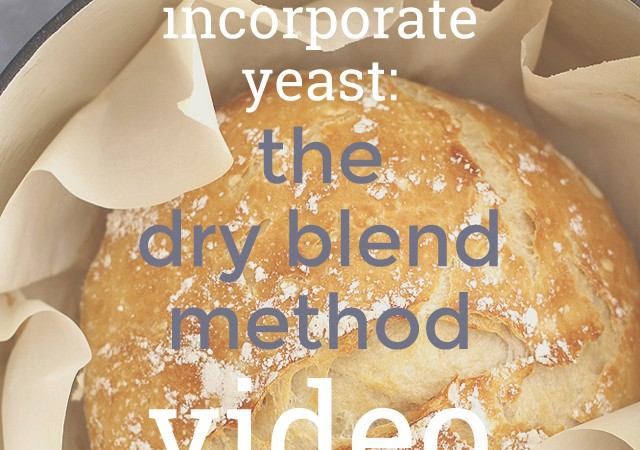 how to incorporate yeast