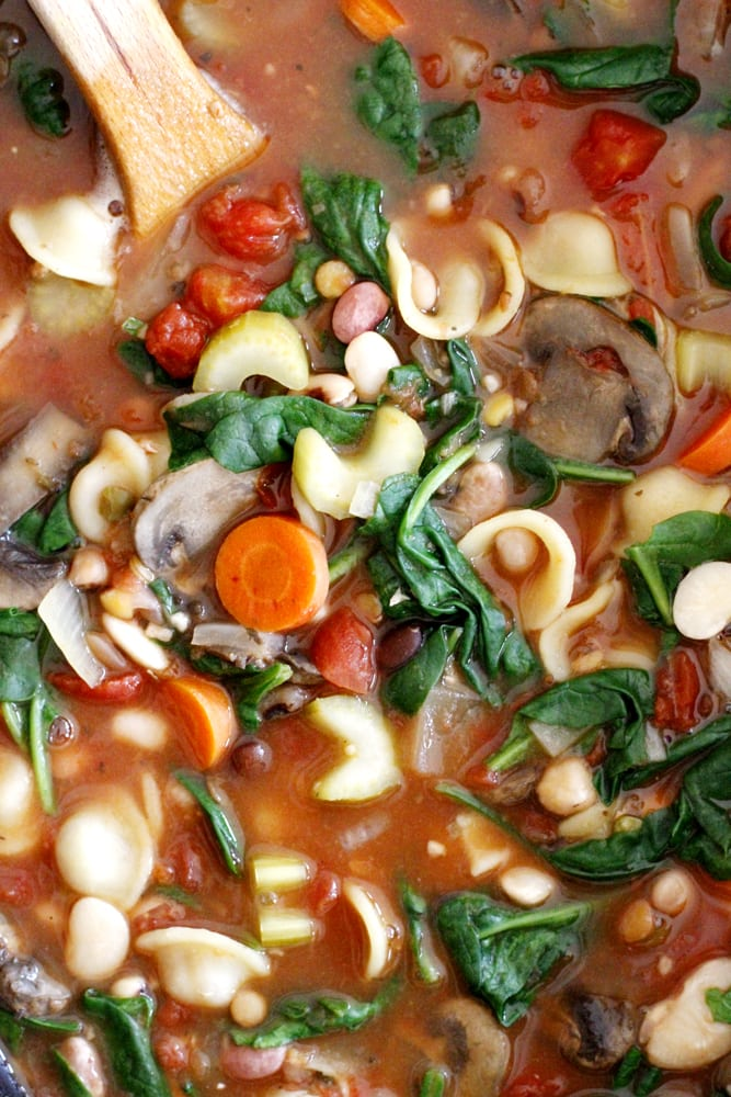 close up minstrone soup