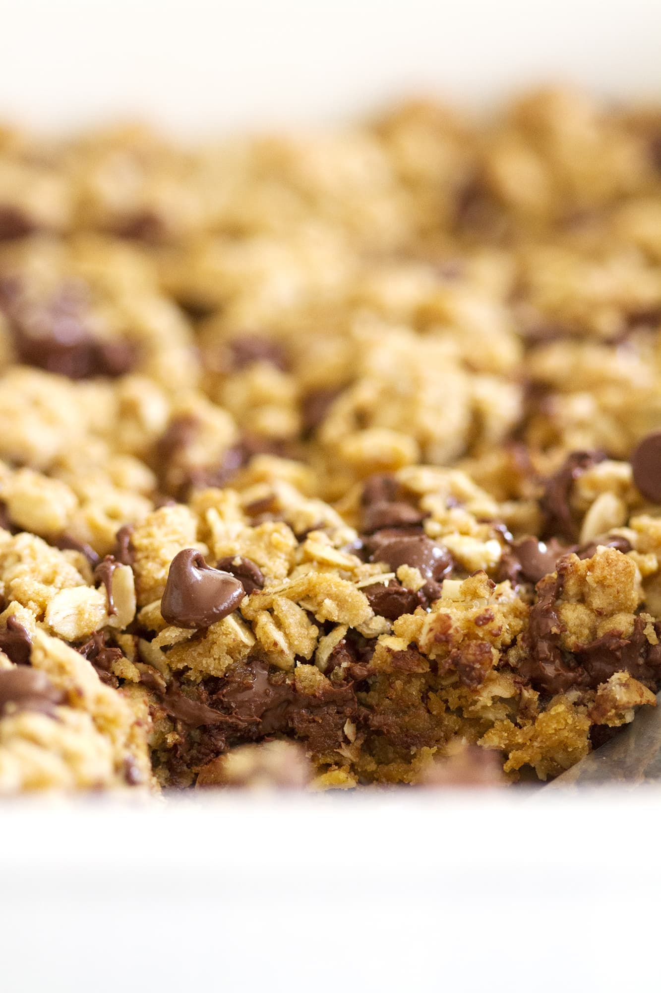 close up on chocolate chips