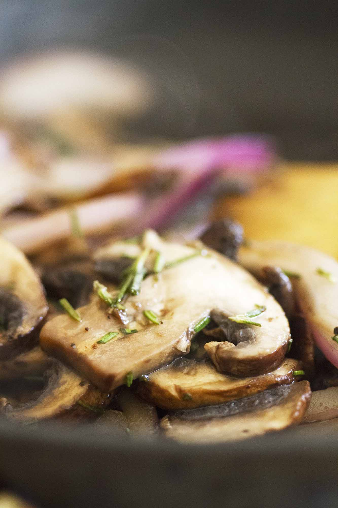 detail close up of mushroom