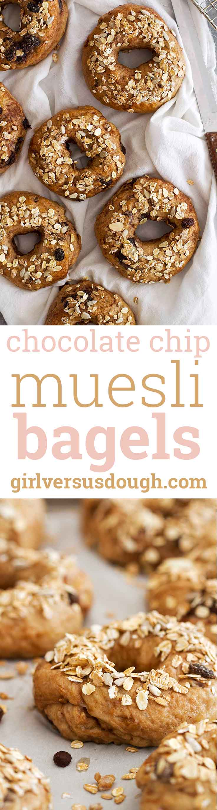 Chocolate Chip Muesli Bagels -- chewy homemade bagels baked with chocolate, muesli and whole wheat flour. A delicious and satisfying breakfast! girlversusdough.com @girlversusdough