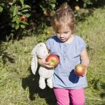 avery at the apple orchard