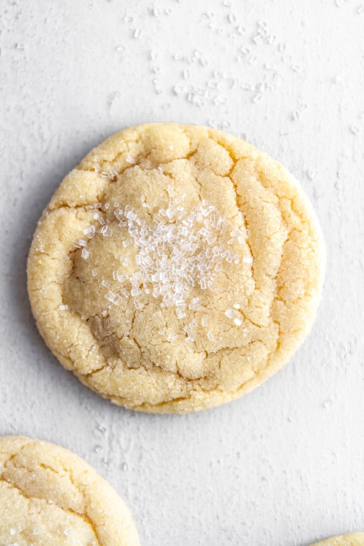 one chewy sugar cookie with a sugar topping